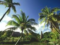 Фото 4.. Обои с природой для рабочего стола: тропические острова