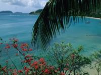 Фото 6.. Обои с природой для рабочего стола: тропические острова