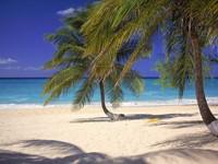 Фото 10.. Обои с природой для рабочего стола: тропические острова