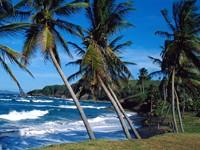 Фото 11.. Обои с природой для рабочего стола: тропические острова
