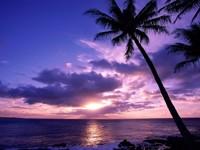 Фото 13.. Обои с природой для рабочего стола: тропические острова