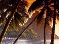 Фото 14.. Обои с природой для рабочего стола: тропические острова