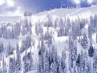 Фото 1.. Обои с природой для рабочего стола: зима