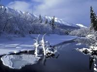 Фото 12.. Обои с природой для рабочего стола: зима
