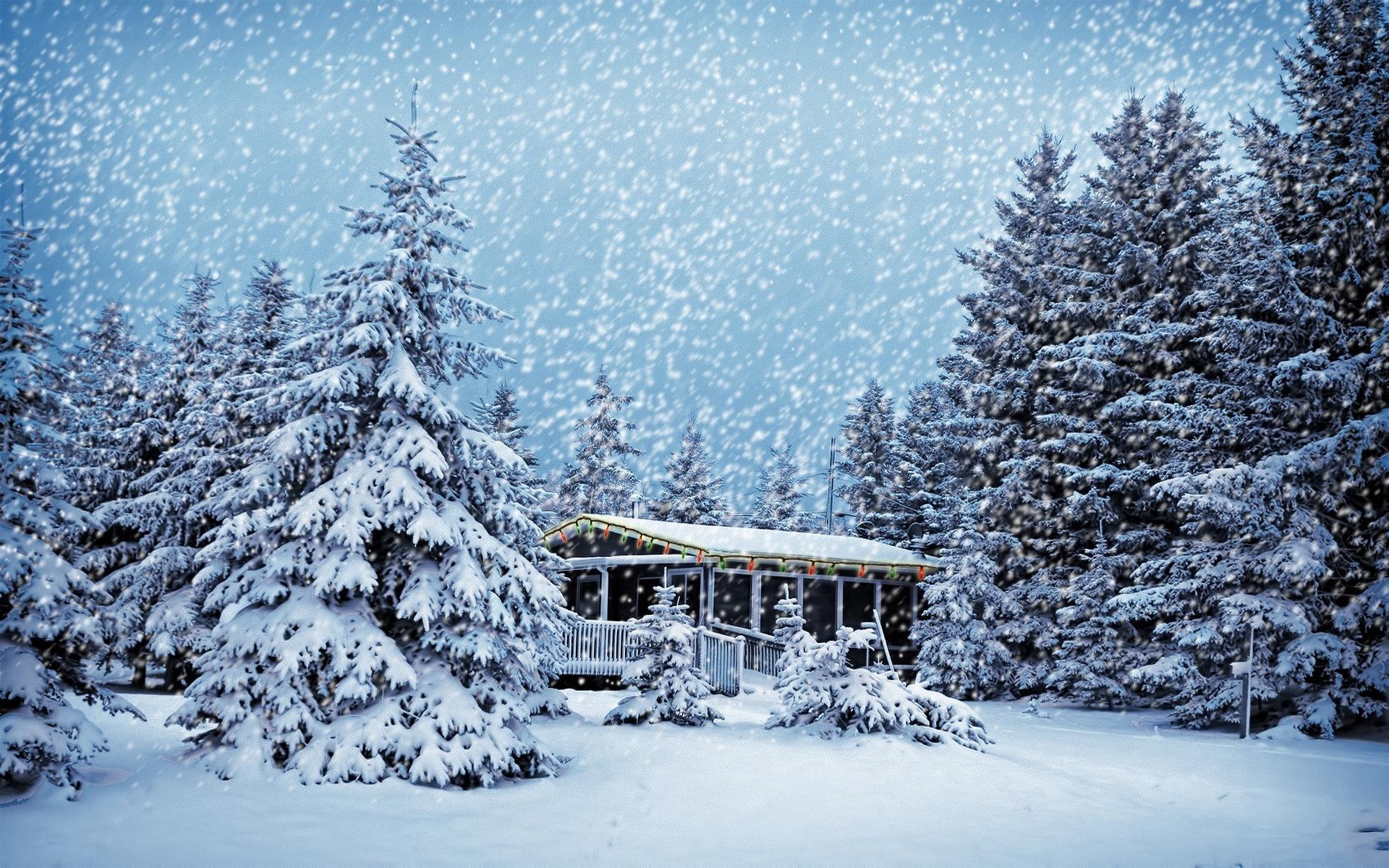 самары красивые картинки новый год зима обои гимнастки тех