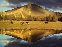 Пастбище возле гор и озера