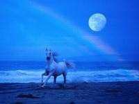 Лошадь, бегущая по морю ночью