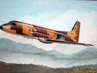 Военный бомбардировщик над южными землями