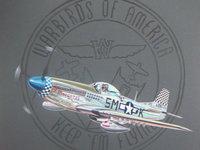 Истребитель летит на фоне герба авиации Америки