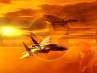 Эмблема военно-воздушных сил США, два самолёта