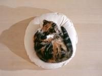 Клубочек на подушке