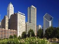 """Чикаго, парк """"Миллениум"""", Иллинойс"""