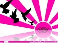 Черные голуби на розовом