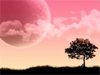 Мечты под деревом