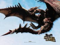 Мonster hunter dragons