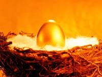 Золотое яйцо в гнезде