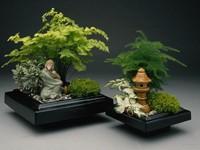 Миниатюрный китайский сад