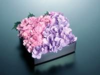 Розово-сиреневые цветы в коробке