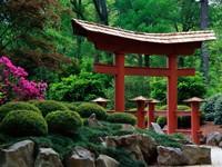 Китайский сад с беседкой