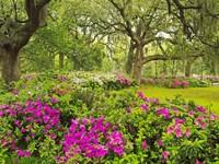 Цветочный забор в саду