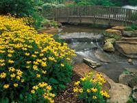 Сад  цветочный с мостом и водопадом