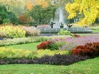 Сад с клумбой и фонтаном