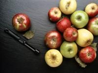 Тринадцать яблок