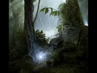 Загадочный волшебный лес