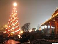 Новогодняя елка и коттедж