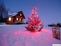 Новогодняя ель и домик