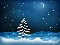 Одинокая елка ночью