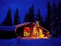 Светящаяся елка возле дома вечером