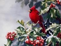 Красная птичка на рябине