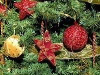 Елка, украшенная звездами и шарами