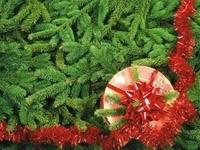 Подарок с красным бантом на елке
