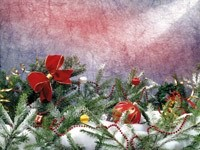 Украшенные ветви на снегу