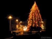 Большая украшенная елка в городе