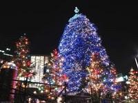 Новогодние елки в городе