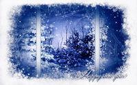 Заснеженные деревья за окном