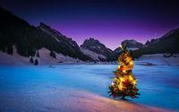 Нарядная ёлка в заснеженных горах
