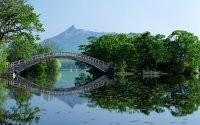 Мост через пруд