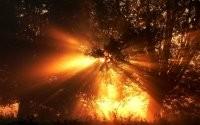 Лучи света