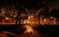Темный парк