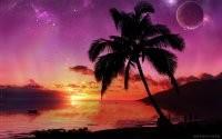 Закат, море и пальма