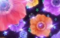 Звездочки и цветочки