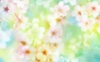 Много цветочков