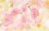 Розы и звездочки