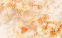 Капельки на листьях
