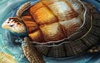 3D черепаха