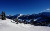 Заснеженные ели и горы